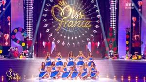 今のフランスを代表する Miss France 2014