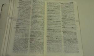 僕の紙辞書信仰(2)辞書を持ち街へ出る