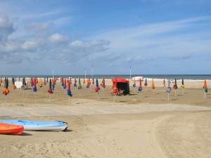 夏の海辺、フランス人が読みたい本のジャンルは?