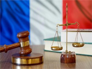 フランス憲法に文法ミス 右派議員が修正を要求 7月10日からの憲法改正審議会で検討