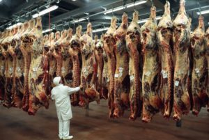 ポーランド産牛肉 病気の牛の肉およそ800kgがフランス国内に流通か