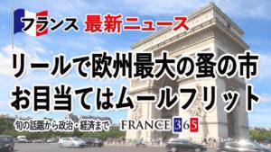リールで欧州最大の蚤の市開催 お目当てはムールフリット-9月第1週 フランス最新ニュース-
