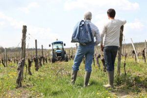 増える若者や女性の新規就農
