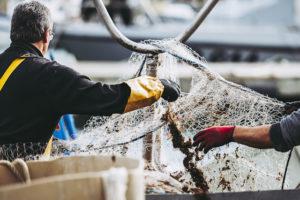 ブレグジットFTA交渉期限迫る、フランス《ノーディール》準備、どうなる?漁業権