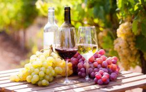 ワイン フランス グラス